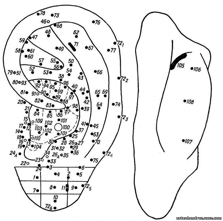 Картинка для пальпации аурикулярных точек